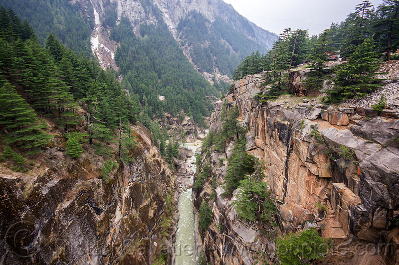jadh ganga gorge (india), bhagirathi valley, canyon, cliffs, forest, gorge, india, jadh ganga, mountains, river