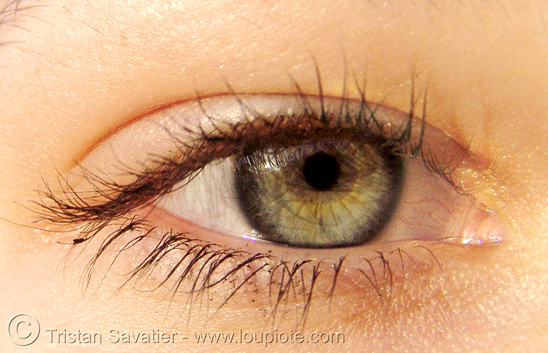 jessica's eye, close up, eye color, eyelashes, iris, jeskaeska, jessica, macro, pupil, right eye, woman