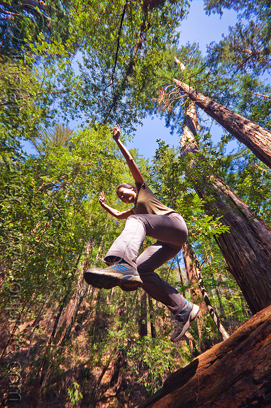 jumping in redwood forest, big sur, fallen tree, forest, jump shot, pine ridge trail, redwood tree, sequoia sempervirens, sharon, tree trunk, trekking, vantana wilderness, woman