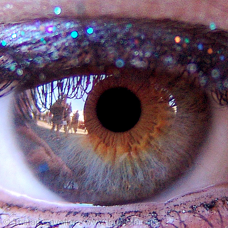 karena's eye, close up, eyelashes, iris, karena, macro, pupil, right eye, woman