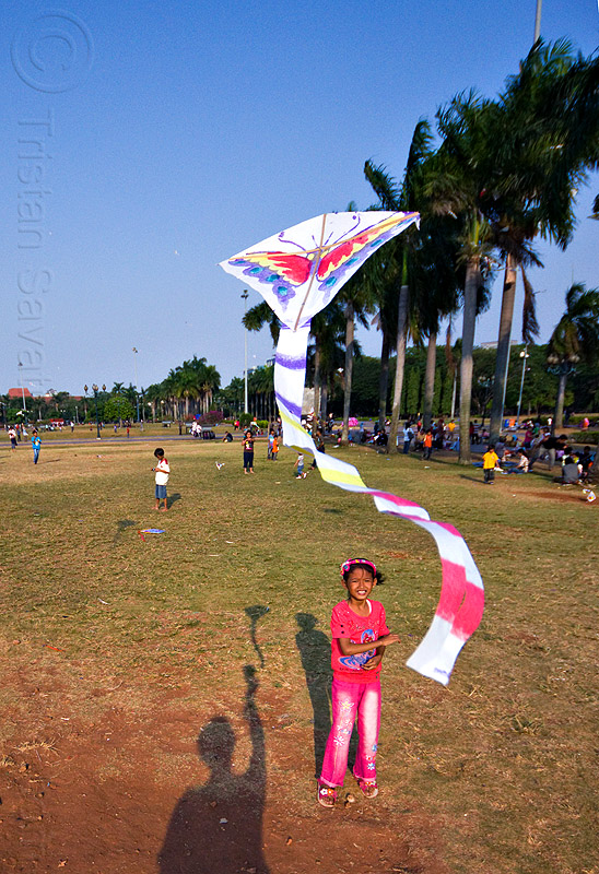 kid flying a kite in merdeka square (jakarta), child, eid ul-fitr, flying, jakarta, java, kid, kite, medan merdeka, merdeka square, palm trees, park, shadows