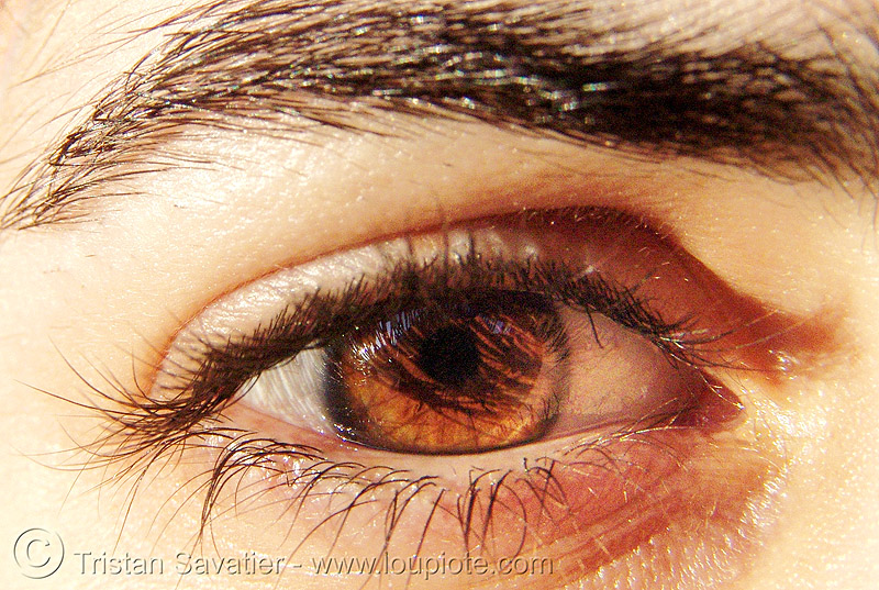 leanne's eye, close up, eye color, eyebrow, eyelashes, iris, macro, people, pupil, right eye, woman