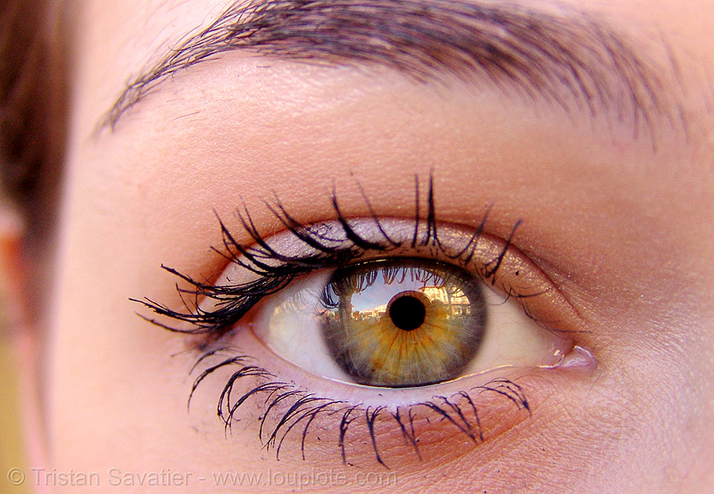 fashion iris woman pupils eyes beautiful look