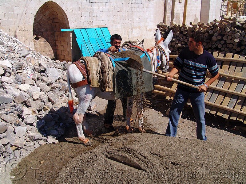 loading sand on donkey, asinus, construction workers, donkey, equus, gravel, hauling, kurdistan, loading, mardin, men, sand, transporting, working animal