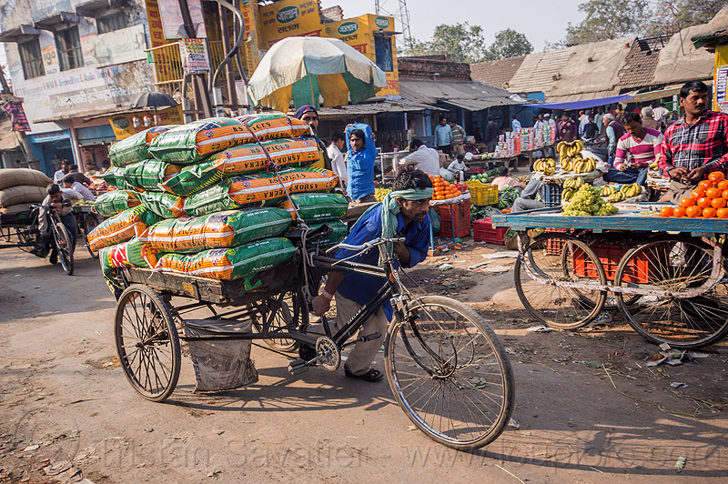 man pushing cargo tricycle with heavy load of freight (india), bags, bearer, cargo tricycle, cargo trike, freight tricycle, freight trike, heavy, load, man, moving, pushing, sacks, street market, transport, transportation, transporting, varanasi, walking