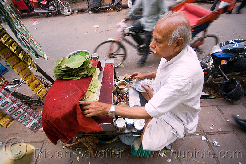 man selling betel quids - delhi (india), areca nut, betel leaves, betel nut, betel quids, delhi, india, man, street seller, street vendor