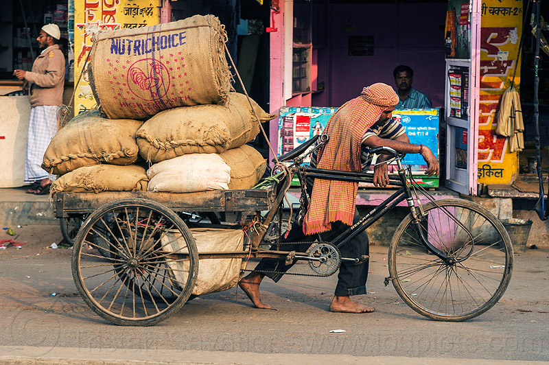 man with heavy load of freight on cargo tricycle (india), bags, bearer, cargo tricycle, cargo trike, freight tricycle, freight trike, heavy, load, man, moving, pushing, sacks, street, transport, transportation, transporting, varanasi, walking
