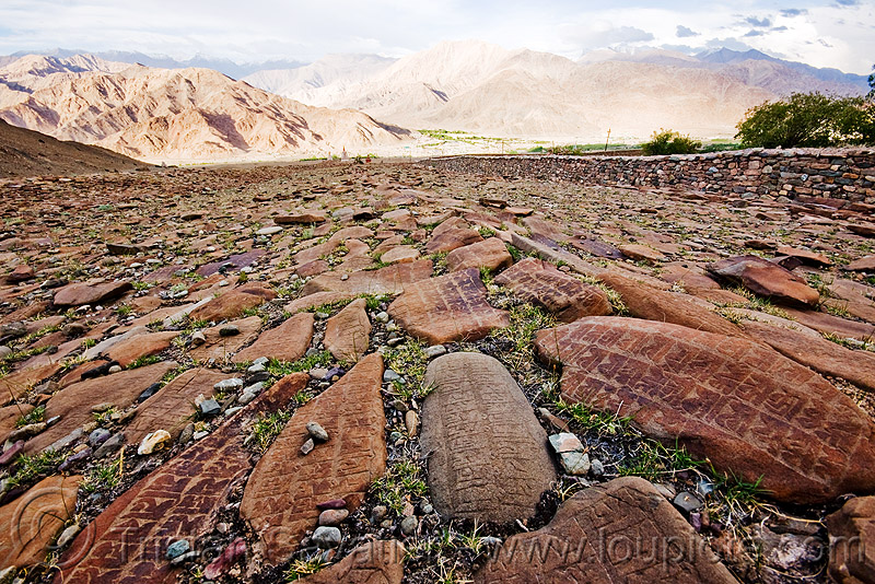 mani stones - ladakh (india), carved, hemis gompa, india, ladakh, mani stones, mani wall, prayer stone wall, prayer stones, tibetan monastery