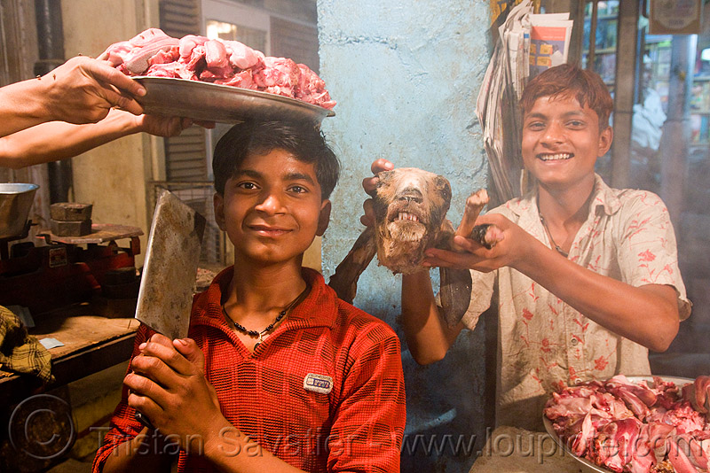 meat shop - goat meat - butchers - delhi (india), brothers, butcher, chevon, halal, halal meat, market, meat market, mutton, people, raw, raw meat
