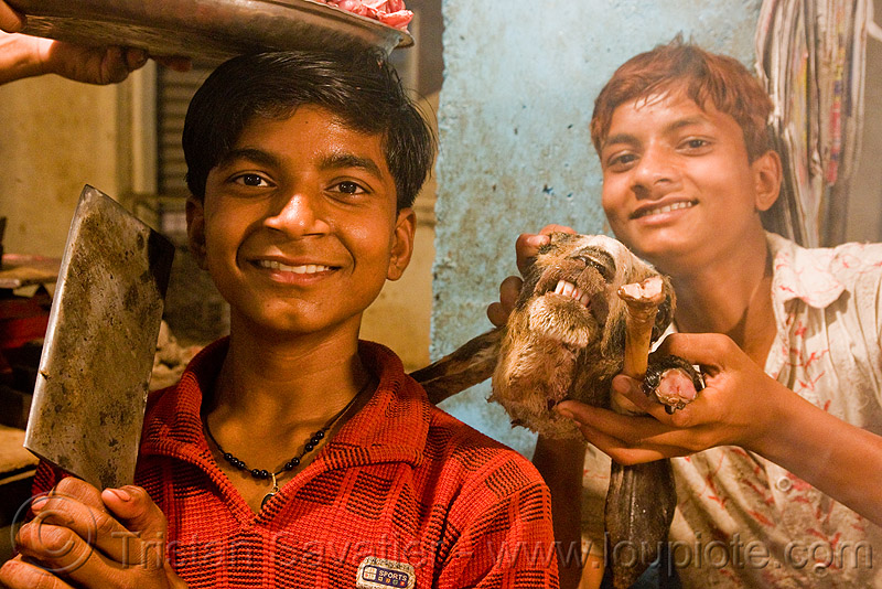 meat shop - goat meat - butchers - delhi (india), brothers, butcher, chevon, delhi, goat head, goat meat, halal meat, india, meat market, meat shop, mutton, raw meat