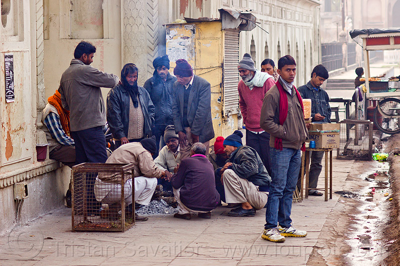 men warming up around small bonfire on sidewalk - lucknow (india), bonfire, cold, curb, fire, group, lucknow, men, sidewalk, smoke, street, winter