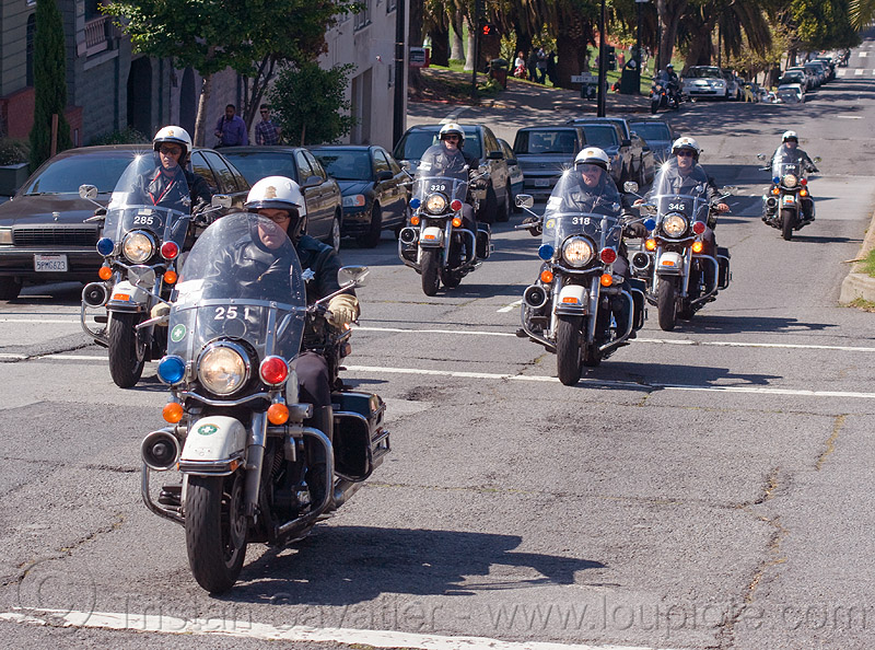 motorcycle police - SFPD, harley davidson, law enforcement, motor cop, motor officer, motorcycle police, motorcycle unit, motorcycles, rider, riding, sfpd