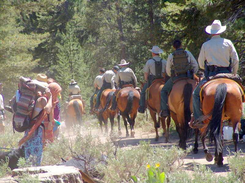 mounted police - rainbow gathering - hippie - horses, hippie, horses, law enforcement, mounted police, park rangers