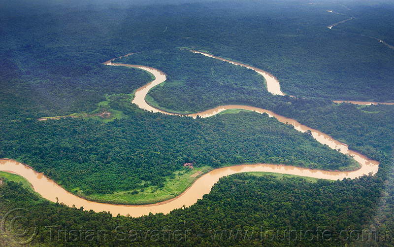 muddy river meanders in the jungle, aerial photo, bend, forest, rain forest, water, winding, winding river