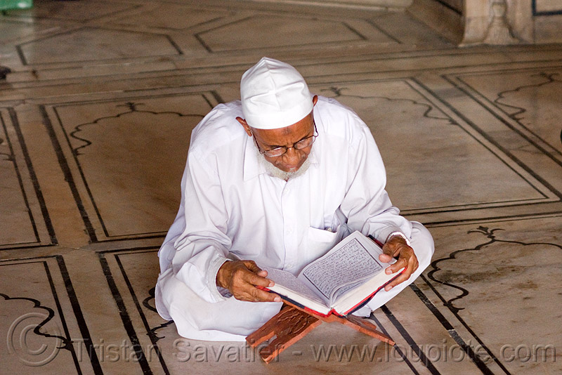 mulsim man reading the quran in mosque - delhi (india), cross-legged, delhi, faith, holy book, islam, jama masjid, koran, man, mosque, muslim, praying, quraan, quran, reading, religion, scholar, scriptures, sitting, studying, verses, مسجد جھان نما