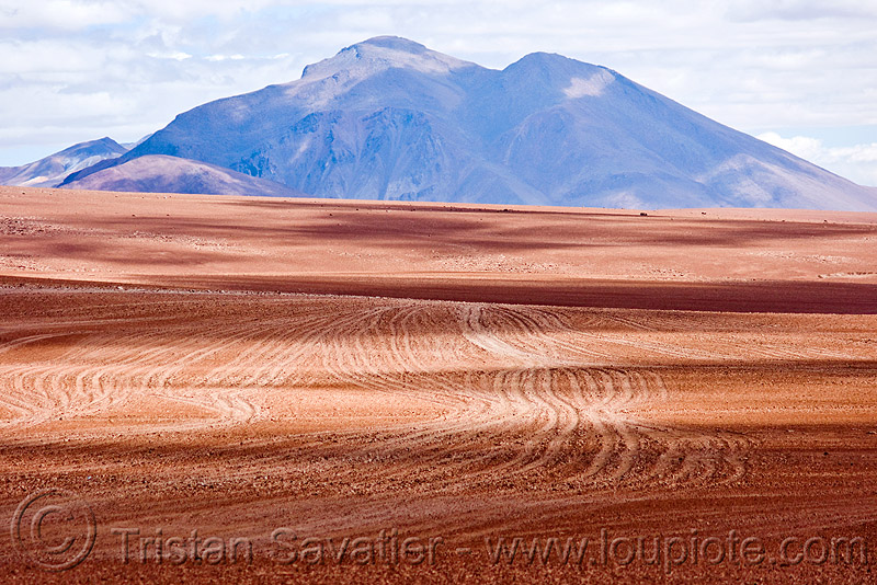 multiple dirt tracks - high desert (bolivia), altiplano, dirt roads, environment, pampa, ruts, tracks, unpaved
