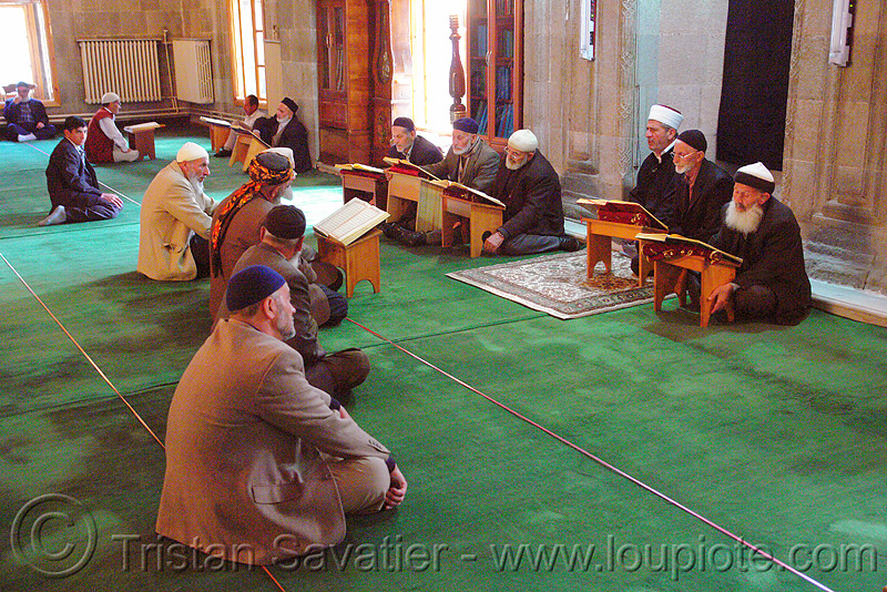 muslim men studying the quran in mosque, book, carpet, cross-legged, erzurum, faith, green carpet, holy, holy book, imams, islam, koran, people, praying, quraan, reading, religion, scholars, scriptures, sitting, verses
