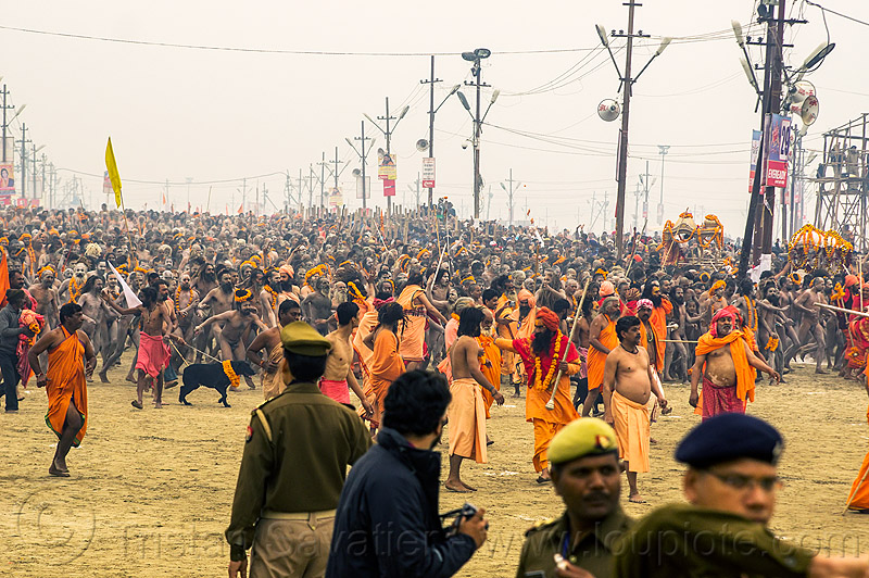 naga babas procession at the kumbh mela hindu festival (india), cops, crowd, flower necklaces, flowers, hinduism, holy ash, kumbha mela, maha kumbh, maha kumbh mela, marigold flowers, men, naga sadhus, naked, orange flowers, people, police, police officers, sacred ash, sadhu, sangam, triveni sangam, vasant panchami, vasant panchami snan, vibhuti, walking