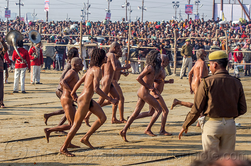 naga babas running after ritual bath at kumbh mela (india), amavasya, crowd, hindu, hinduism, kumbh maha snan, kumbha mela, maha kumbh, maha kumbh mela, mauni amavasya, men, naga sadhus, naked, people, procession, sangam, triveni sangam