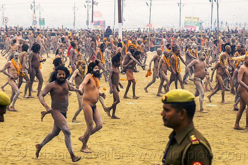 naked hindu devotees (naga babas) run toward the ganges river - kumbh mela 2013 festival (india), cop, crowd, flower necklaces, hindu, hinduism, holy ash, kumbha mela, maha kumbh mela, marigold flowers, men, naga babas, naga sadhus, naked, orange flowers, police officer, procession, sacred ash, sadhu, triveni sangam, vasant panchami snan, vibhuti, walking