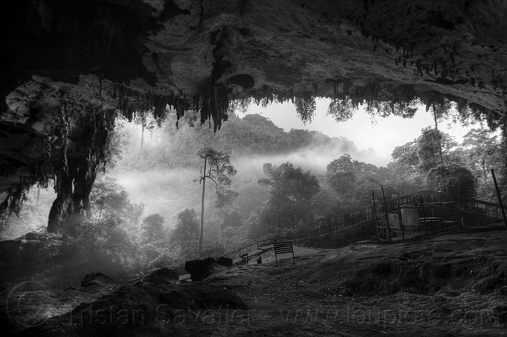 niah caves in the fog (borneo), backlight, cave, cave formations, cave mouth, caving, concretions, forest, hazy, jungle, misty, natural cave, rain forest, speleothems, spelunking, stalactites