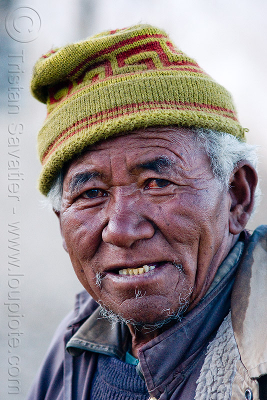 old farmer - pangong lake - ladakh (india), farmer, hat, india, knitcap, ladakh, old man, spangmik