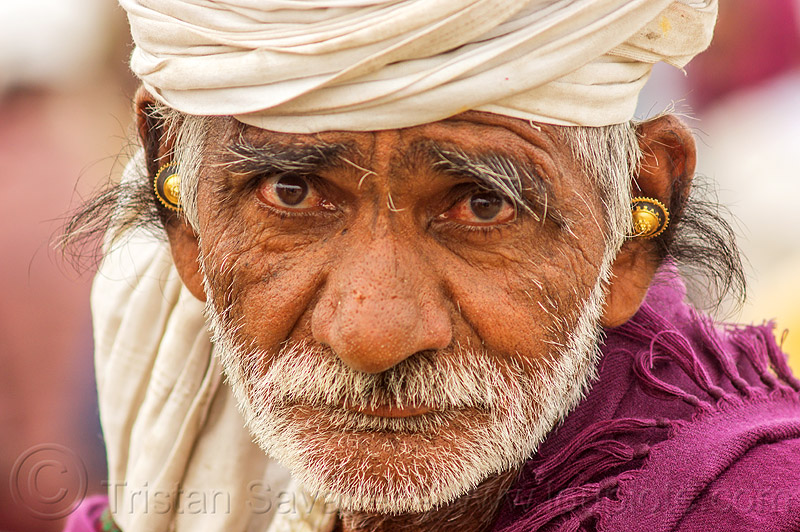 old hindu man with hairy ears (india), ear jewelry, ear piercing, gold earrings, hairy ears, headdress, hindu pilgrimage, hinduism, india, maha kumbh mela, old man, turban, white beard
