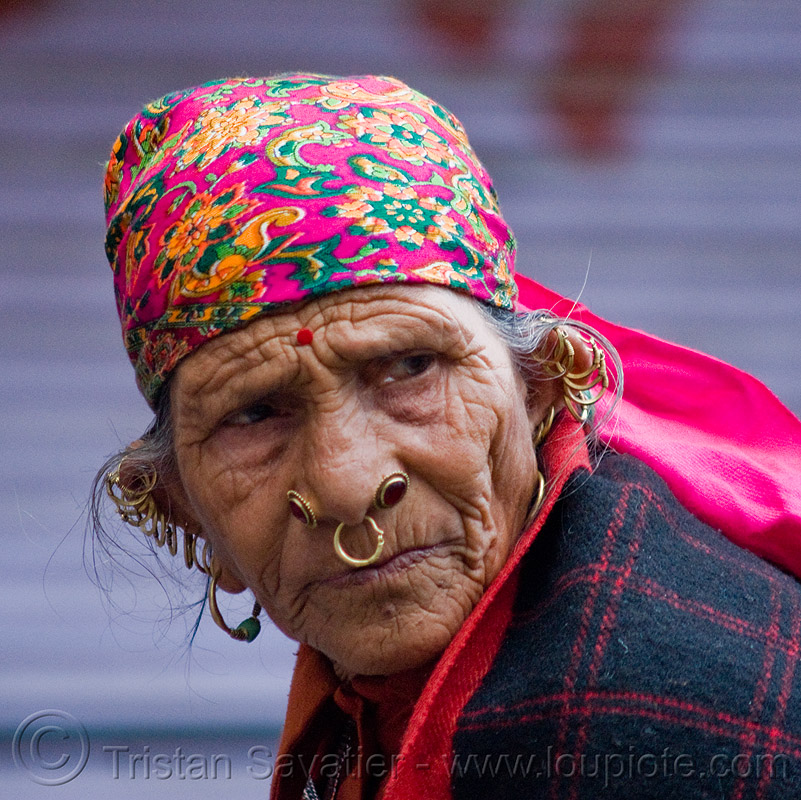 old woman with ear and nose piercing - gold earrings jewelry, cartilage piercing, ear piercings, ear rim piercing, earlobes, ears, gold rings, helix piercing, manali, people, septum piercing