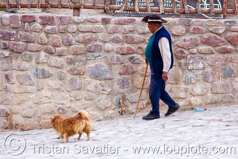 old man walking with dog (argentina), argentina, cane, cobblestones, dog, hat, iruya, noroeste argentino, old man, quebrada de humahuaca, walking stick
