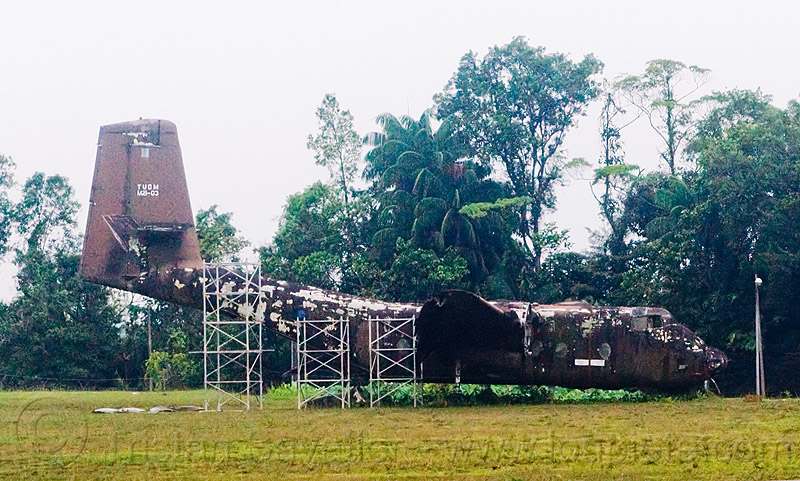 old military plane - malaysian airforce, aircraft, borneo, de havilland canada, de havilland caribou, decaying, decommissioned, dhc-4, dhc-4a, fm1402, jungle, m21-03, malaysia, miri airport, plane, rain forest, scaffolding, trees, tudm, wreck