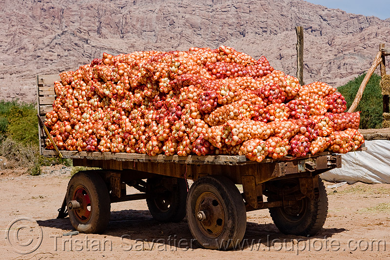 onion bags on farmer's trailer, cachi, calchaquí valley, farm trailer, farmer's, noroeste argentino, onion bags, onions, produce, valles calchaquíes, vegetable
