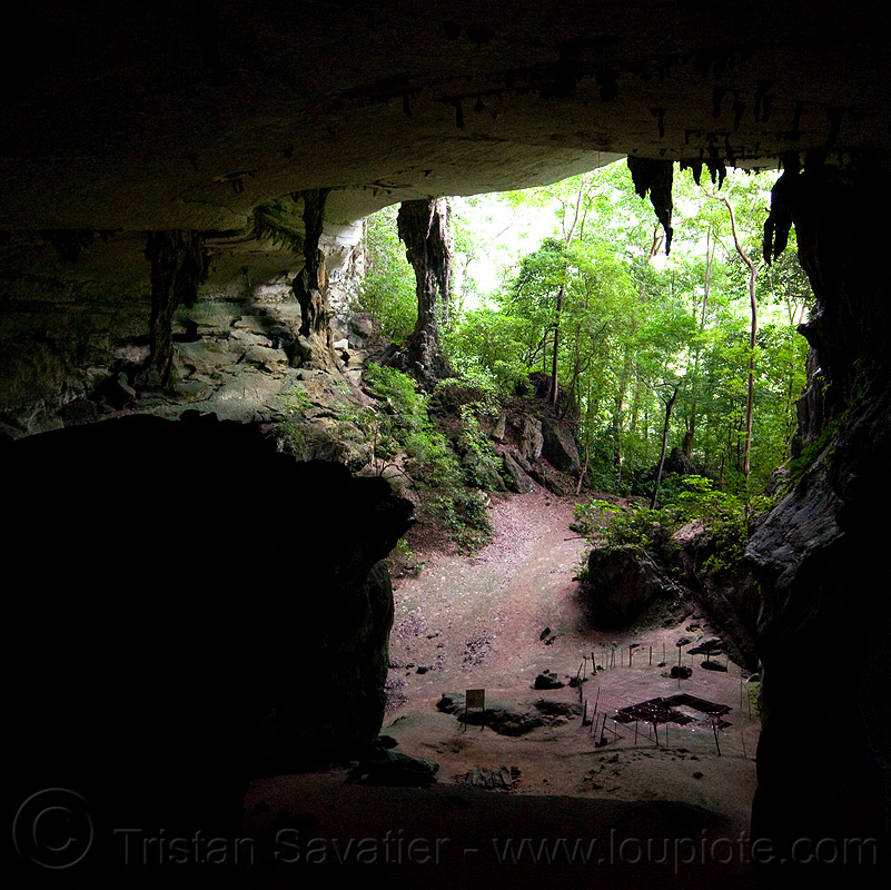 painted cave - niah national park (borneo), archaeology, backlight, cave formations, cave mouth, caving, concretions, jungle, natural cave, niah caves, niah painted cave, rain forest, speleothems, spelunking, stalactites