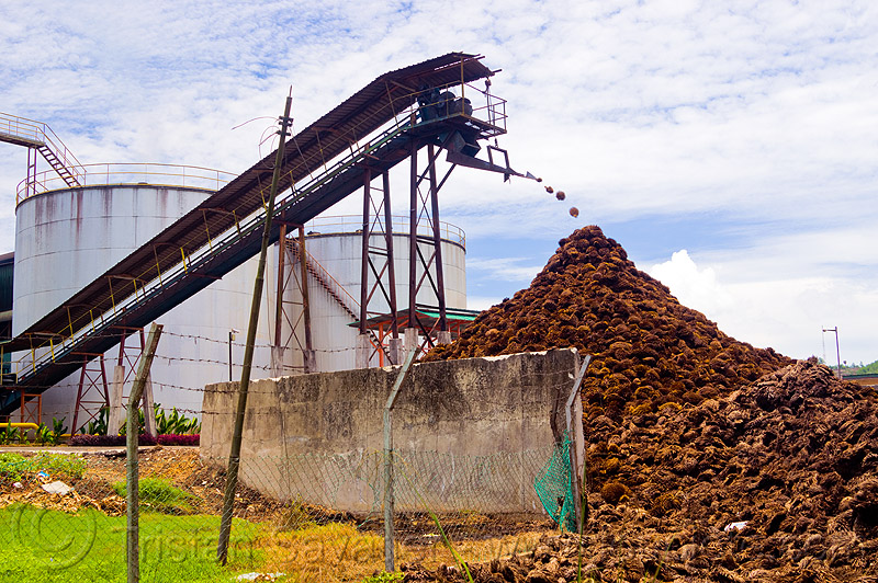 palm oil mill waste, agroindustry, conveyor belt, industrial, oil palm bunches, oil palm mill, palm oil mill waste, palm oil waste