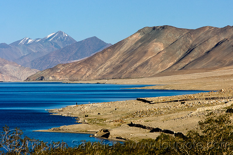 pangong lake, ladakh, mountains, pangong lake, pangong tso, spangmik, water