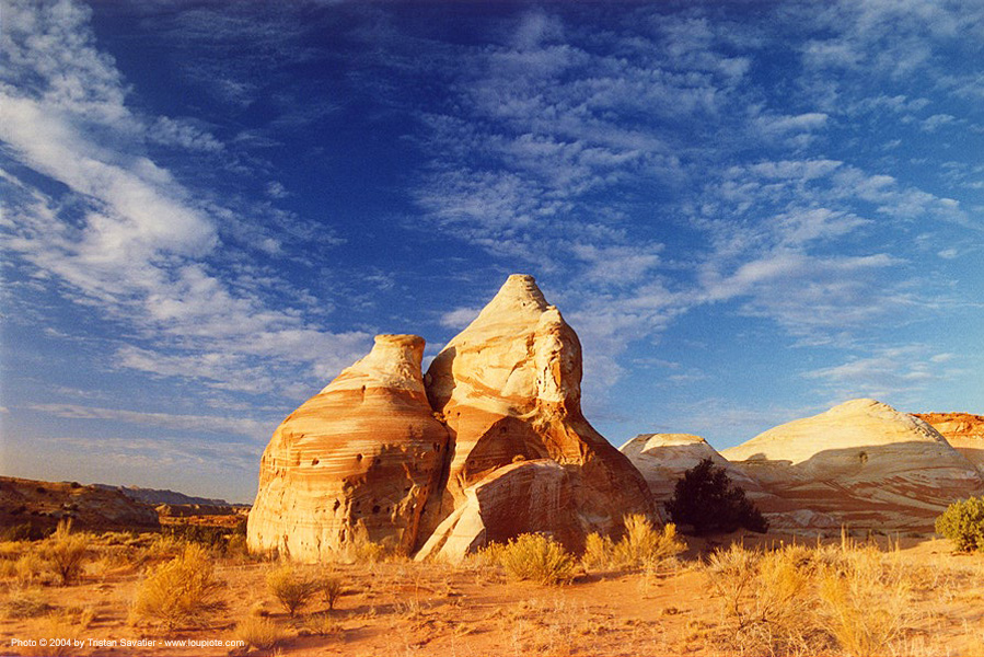 paria canyon area (utah), desert, paria canyon, rock, utah