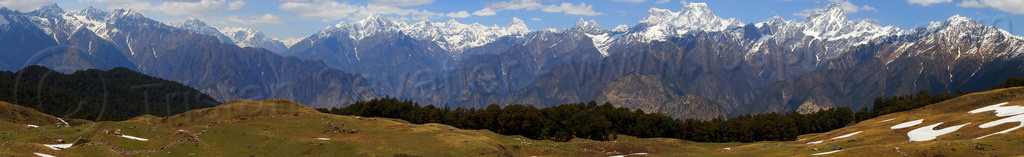 pastures and mountains panorama in the indian himalayas, forest, india, mountains, panorama, pastures, snow