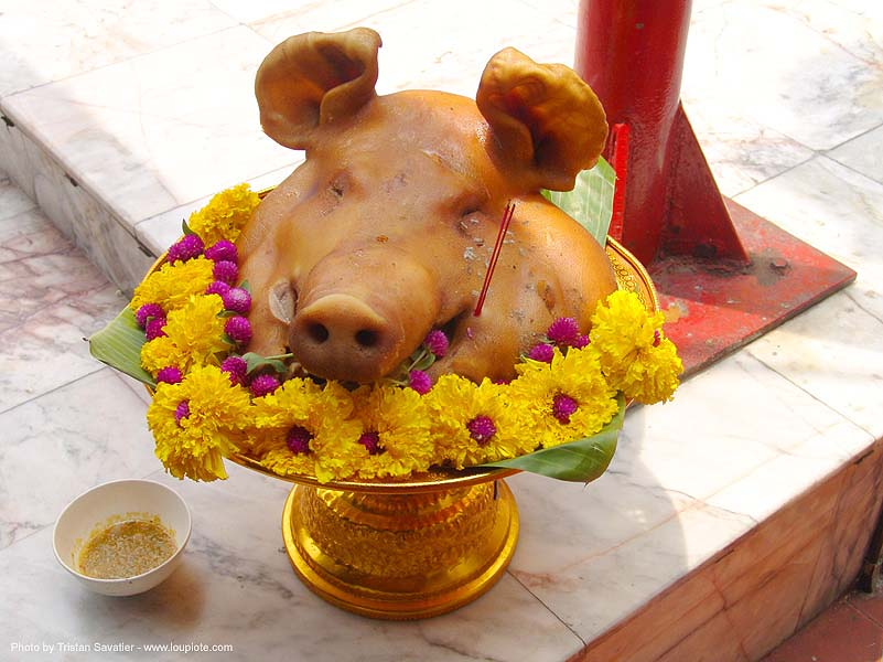 pig head offering - thailand, cooked meat, offering, pig head, pork, temple, wat, yellow flowers, ประเทศไทย
