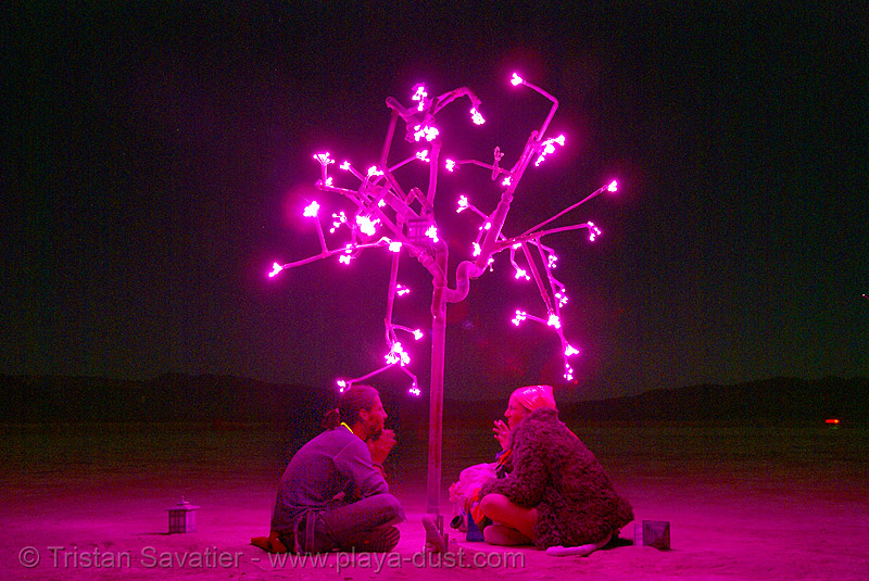 pink tree at night - digital hanami - burning man 2007, art, art installation, doug, doug weigel, ludwig, people