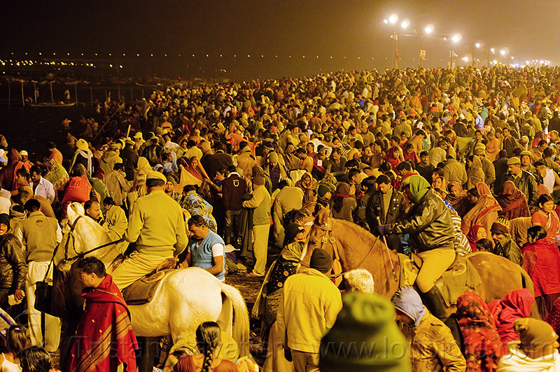 police on horses patrolling the crowd of hindu pilgrims gathering at kumbh mela 2013 (india), cops, crowd control, hindu, hinduism, horse riding, horseback riding, kumbha mela, law enforcement, maha kumbh mela, men, mounted police, night, paush purnima, pilgrims, police horses, police officers, street lights, triveni sangam, women, yatris