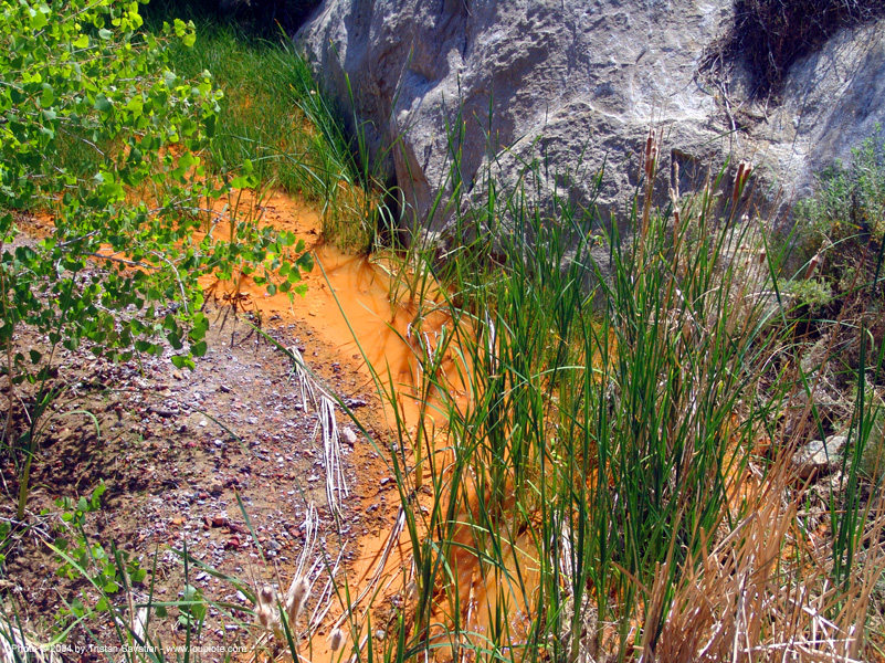 polluted water - environment - quicksilver (mercury) pollution, creek, environment, mercury pollution, mine drainage, new idria, orange, river, stream, water