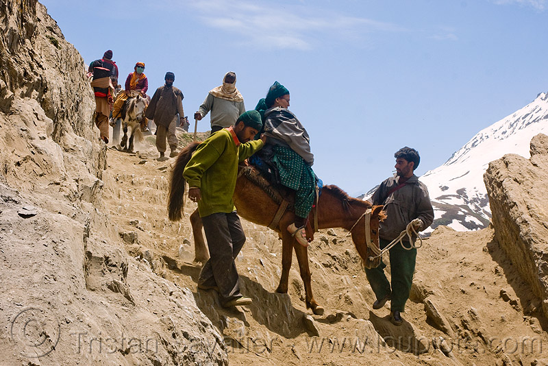ponies and pilgrims on the trail - amarnath yatra (pilgrimage) - kashmir, amarnath yatra, caravan, hiking, hindu pilgrimage, horse-riding, horseback riding, horses, india, kashmir, kashmiris, mountain trail, mountains, pilgrims, ponies, trekking