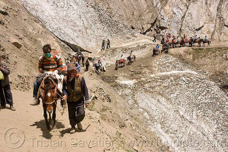 ponies and pilgrims on the trail - amarnath yatra (pilgrimage) - kashmir, amarnath yatra, caravan, glacier, horse riding, horseback riding, horses, kashmir, kashmiris, mountain trail, mountains, pilgrimage, pilgrims, ponies, snow, trekking, yatris, अमरनाथ गुफा