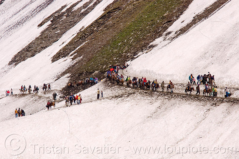 ponies and pilgrims on the trail - amarnath yatra (pilgrimage) - kashmir, amarnath yatra, glacier, horse riding, horseback riding, horses, kashmir, kashmiris, mountain trail, mountains, pilgrimage, pilgrims, ponies, snow, trekking, yatris, अमरनाथ गुफा