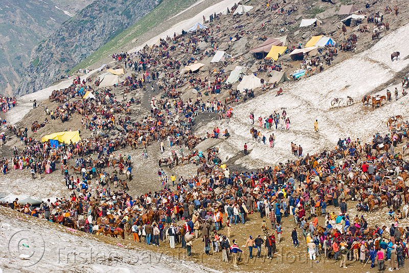 ponies and porters - amarnath yatra (pilgrimage) - kashmir, crowd, horses, kashmiris, mountains, people, pilgrims, pony station, snow, trekking, yatris, अमरनाथ गुफा