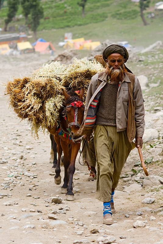 pony-man and his pony with a load of hay - amarnath yatra (pilgrimage) - kashmir, amarnath yatra, beard, hay, hiking, hindu pilgrimage, india, kashmir, kashmiri, mountain trail, mountains, old man, pack animal, pack horse, pilgrim, pony-man, trekking