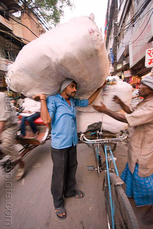 porter - delhi (india), bearer, freight, load, man, people, street, wallah