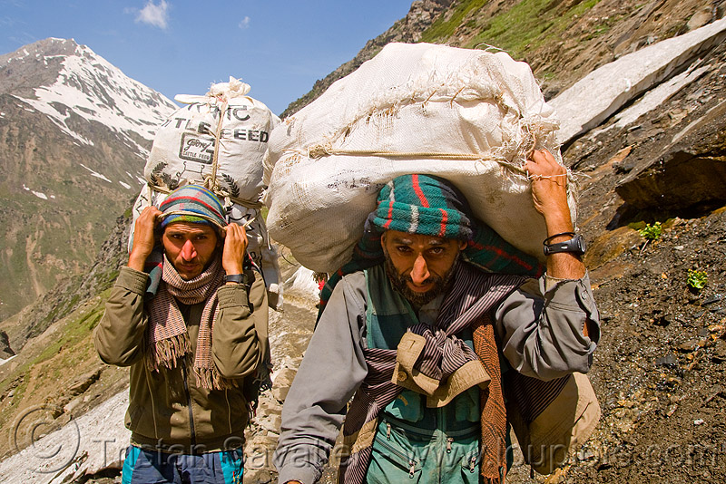 porters carrying heavy loads on trail - amarnath yatra (pilgrimage) - kashmir, amarnath yatra, bags, bearers, kashmir, men, mountain trail, mountains, pilgrim, pilgrimage, porters, snow, trekking, wallahs, yatris, अमरनाथ गुफा