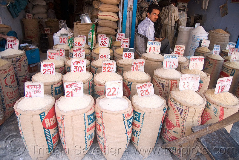 the price of rice - delhi (india), bags, bulk, delhi, price, rice, shop, store
