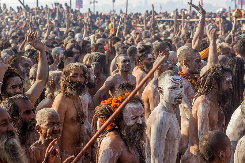 procession of naga sadhus with body covered with ash - kumbh mela (india), amavasya, babas, beard, crowd, dreads, hindu, hinduism, holy ash, kumbh maha snan, kumbha mela, maha kumbh, maha kumbh mela, mauni amavasya, men, naga babas, naked, people, sacred ash, sangam, triveni sangam, vibhuti, walking