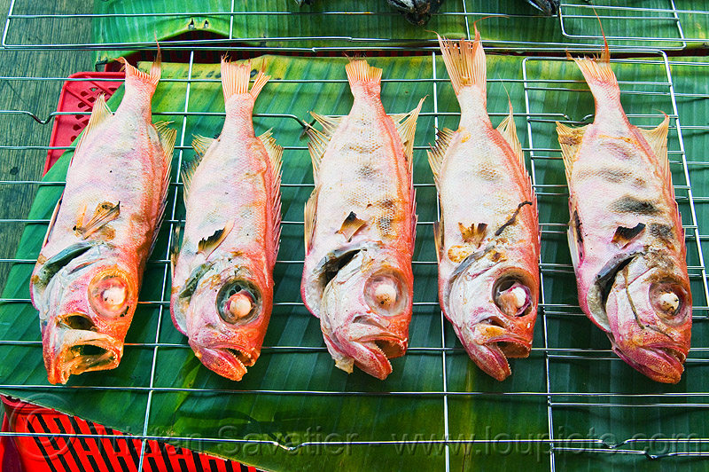 red snapper - grilled fishes, barbecued, bbq, borneo, cooked, fishes, food market, grilled, malaysia, red snapper, restaurant, seafood